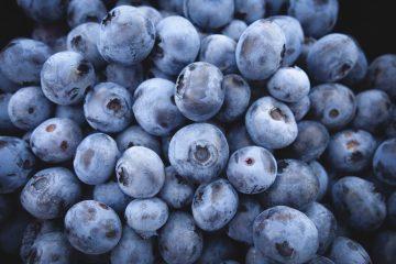 UBC Blueberry Festival